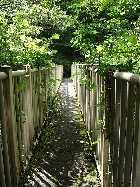 Parson's Bridge