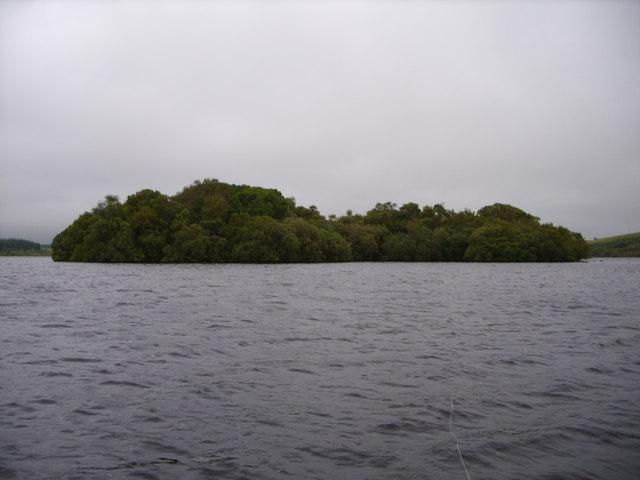 The Largest Island on Loch Ochiltree