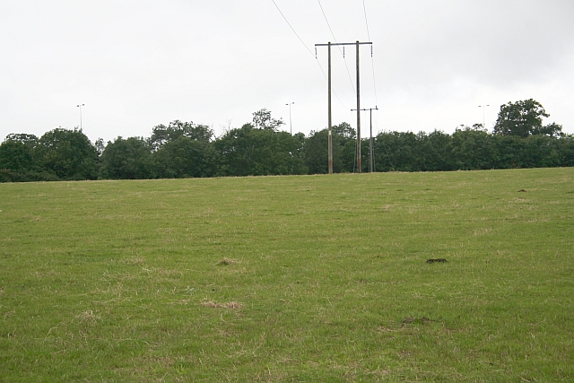 Pasture and Powerlines