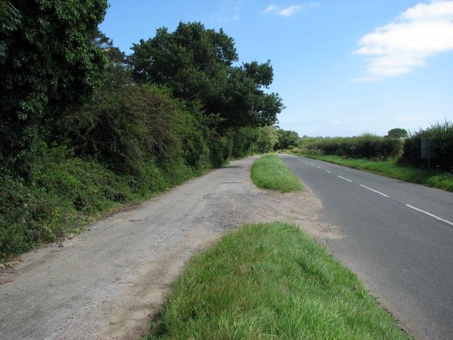 Norwich Road