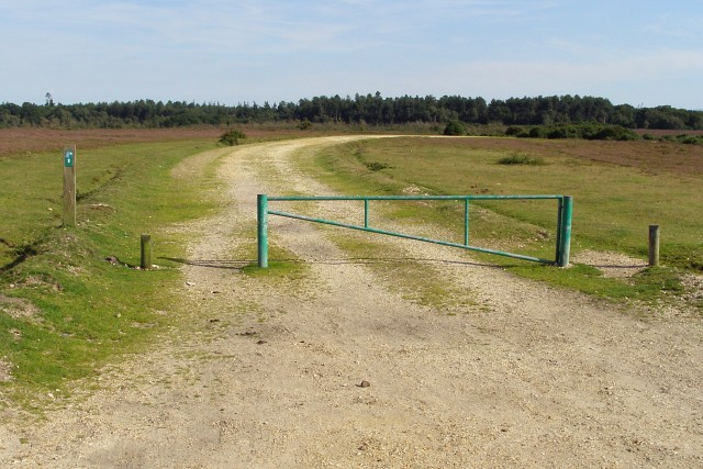 Northern end of the gravel track to King's Copse Inclosure, New Forest