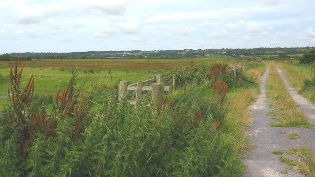 Cors Tygai west of Lon Gors