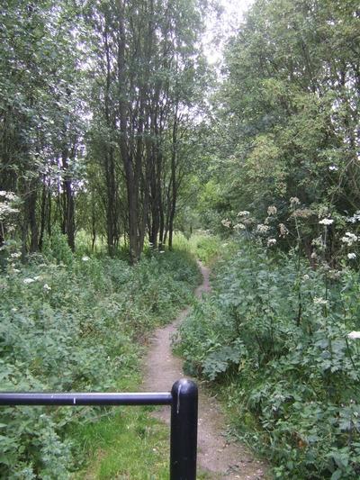 Pendeford Wood Nature Reserve