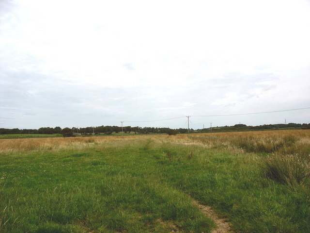 View northwards across the marsh