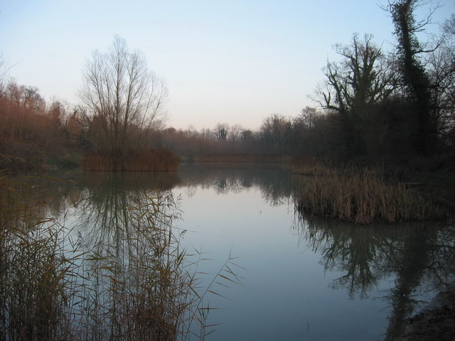 Pockeridge Lake In Wintertime
