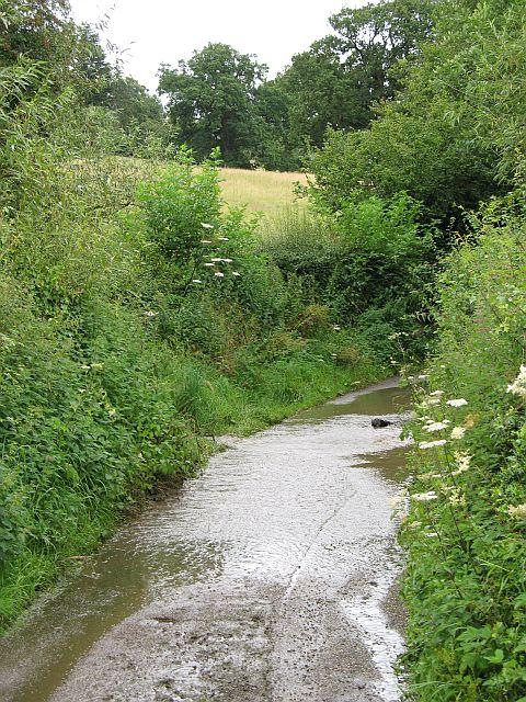 A wet lane