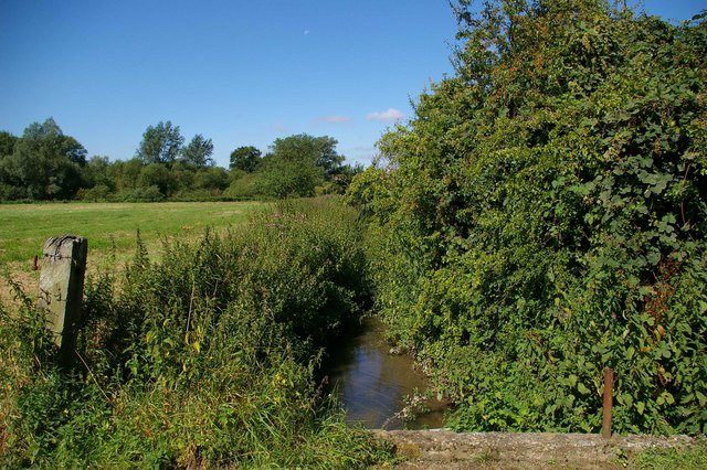 Tributary to Pincey Brook
