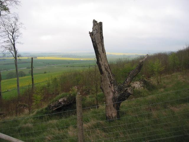 Yatesbury View