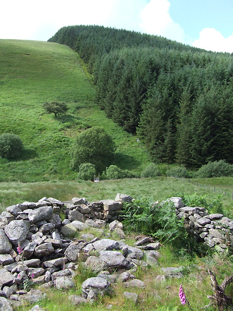 Maes-y-Betws (Ruin) and Doethie Crossing, Ceredigion