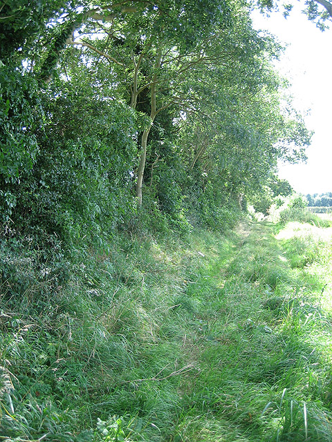 Heading south from Holt to Mannington on bridleway