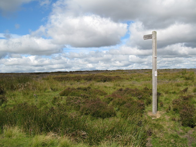 Footpath to Cuthbert's Hill
