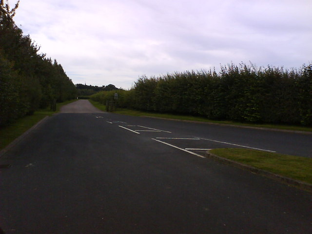 Road to Fountains Abbey