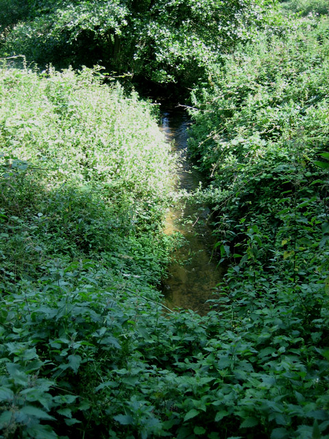 Headwaters of the River Glaven