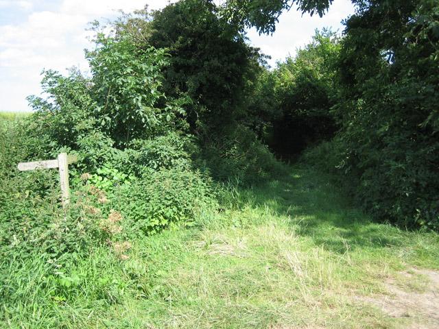 Entry to Hurdle Lane