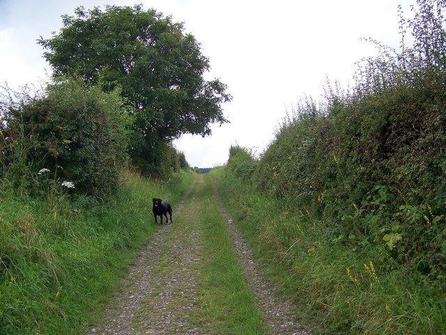 Byway over Hunts Down