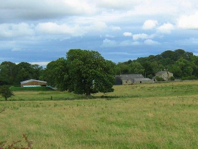 West Belsay Farm