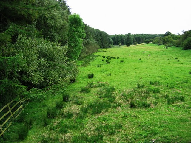 Langhoes Plantation