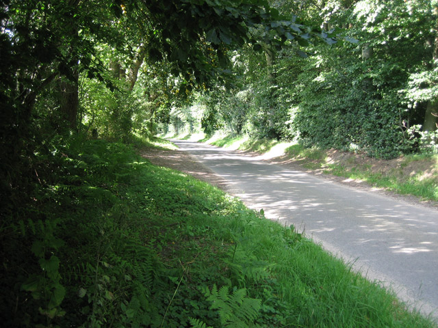 Road beside Lodge Plantation