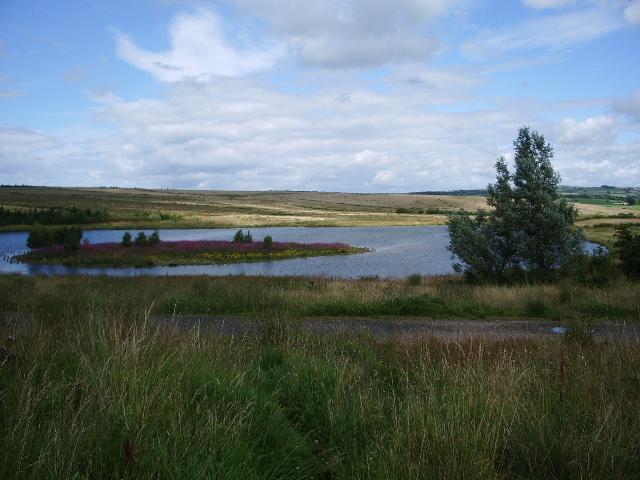 Lake on reclaimed open cast workings