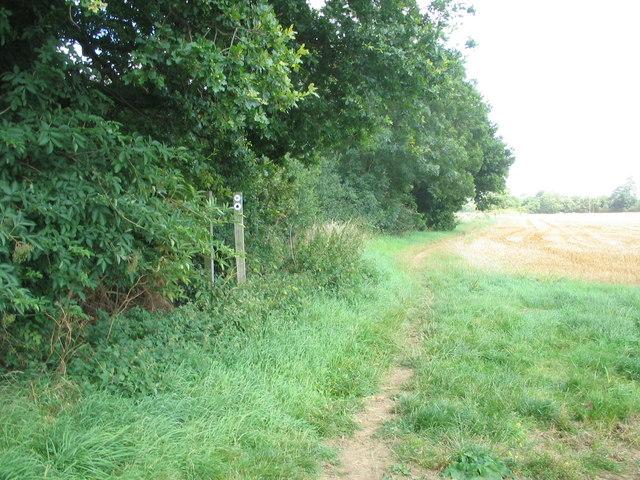 Greensand Ridge Walk footpath
