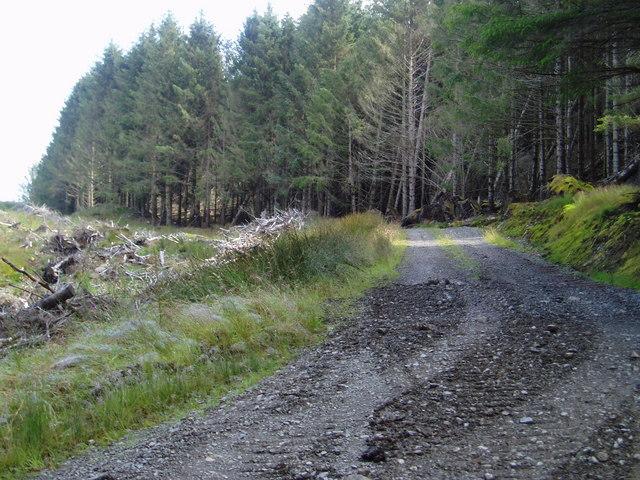 Thomas Olsen road