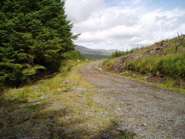Fred Olsen road