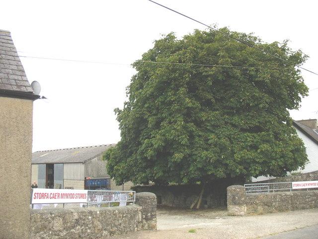 Agricultural merchants store at Cae'r Mynydd, Talwrn