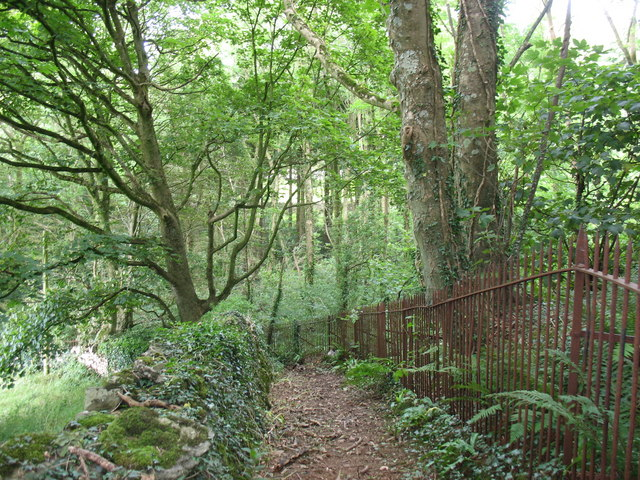 Public footpath around the western perimeter of Coed Plas Llanddyfnan Woods