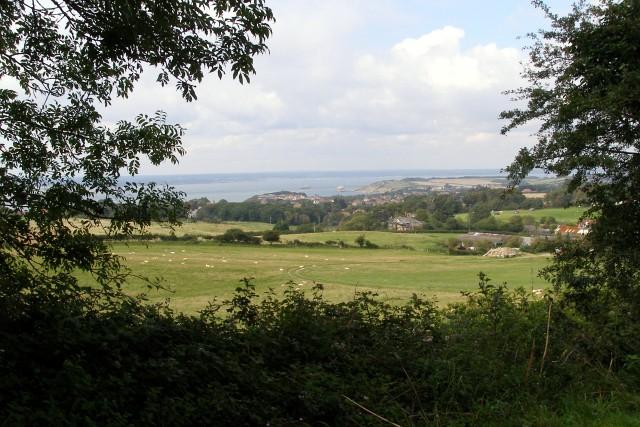 Fields west of Nodewell