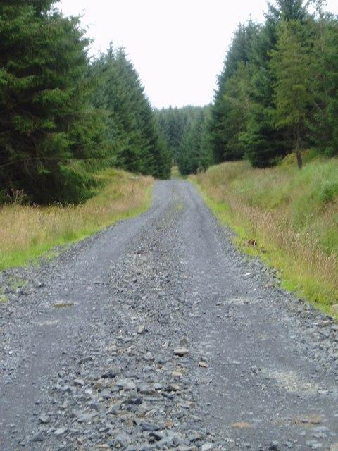 Robert Watson Road.
