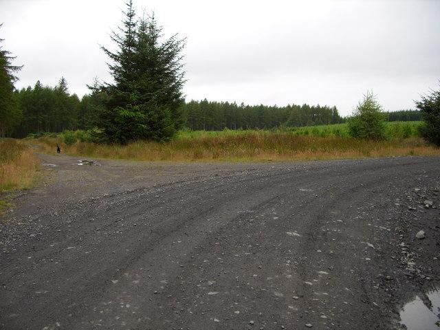 Forest road Junction on Garwachie Moor