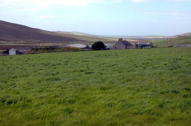 The farm of Farafield