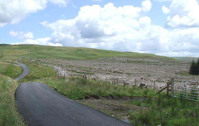 Felled Forestry Site, Bryn Gwyddel, Ceredigion