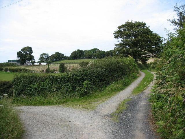 Track junction near Fagwyr Bach