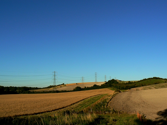 Farmland and pylons, near Easton Royal