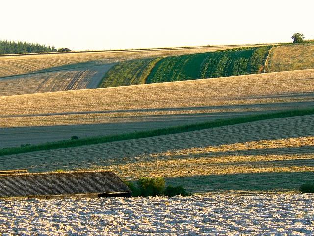 Farmland, south of Easton Royal
