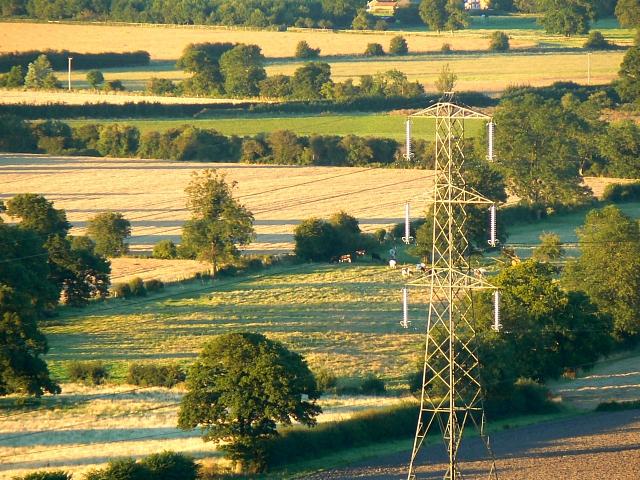 Farmland, near Easton Royal