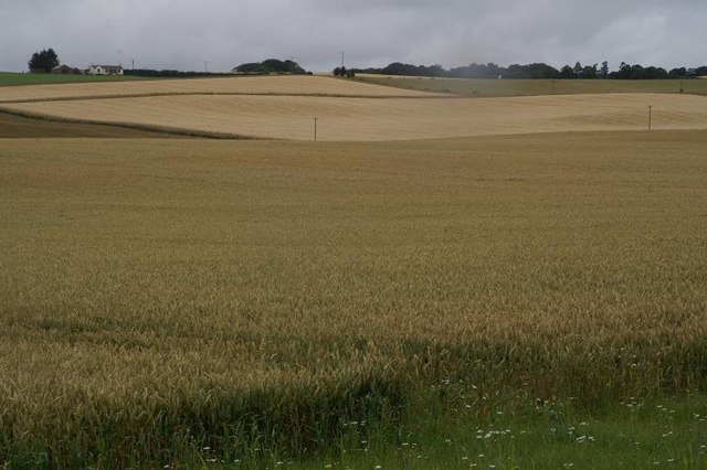 Farmland between Blacklaw and Lochbank