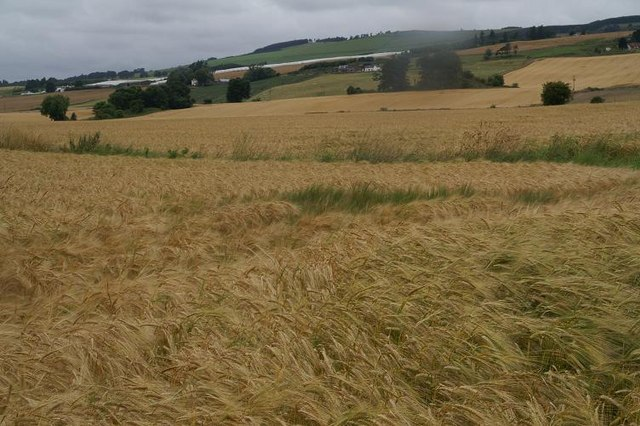 Farmland between Blacklaw and Lochlands