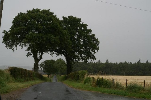 The road south of Coupar Grange Farm on a rainy Sunday morning