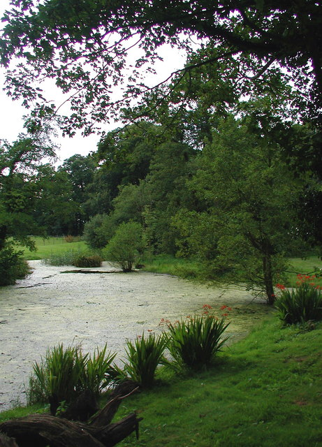 Wassand Hall Pond