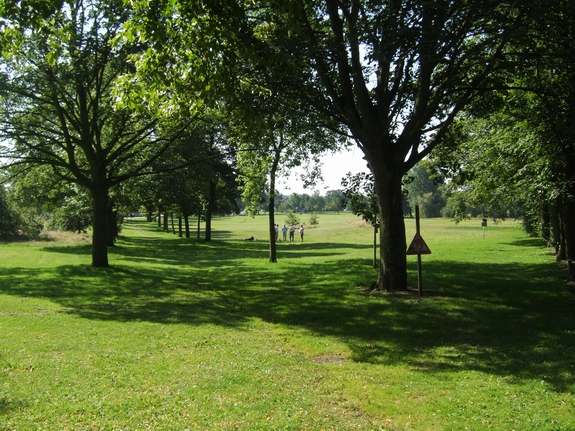 Pelsall Common