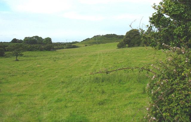 Undulating landscape north of Fagwyr Fawr