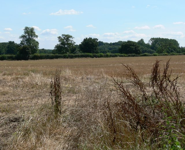 Farmland south of Swithland