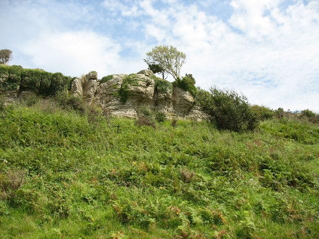 Carboniferous Limestone outcrop
