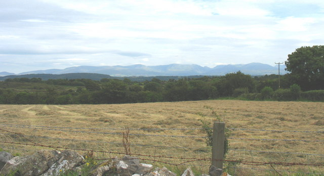 A hay meadow with a view of Snowdonia
