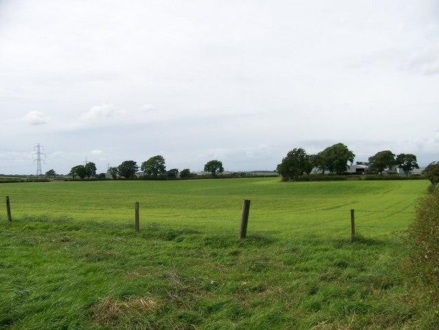The fields beside Highlawside Farm