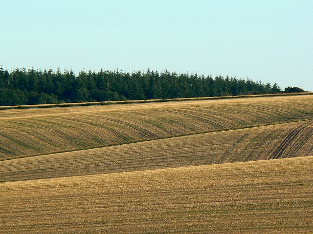 Harvested arable land, south of Easton Royal