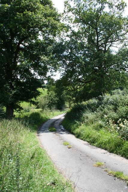 Grassy Lane.