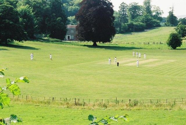 Littlebredy: cricket at Bridehead
